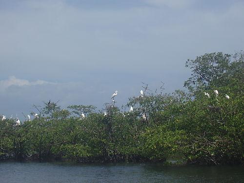 Juan Venado Reserve near Las Penitas